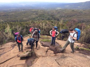 Vandring på Kilimanajro