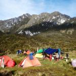 Carstesz läger 5
